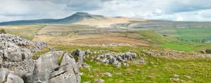 Guided walks & talks of the Yorkshire Dales - Half Day @ Leaves from Ingleton area